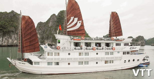 halong bhaya cruise promotion to bring best benefit to customers
