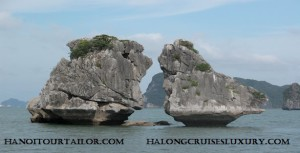 Halong Private Day Tour From Hanoi with private guide and customized services