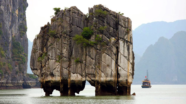 Halong Private day tours