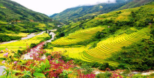 Highlight of the North of Vietnam 6 days 5 nights (2)